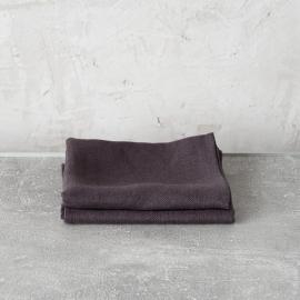 Grigio Set di 2 Asciugamanida Mano in Lino Lara